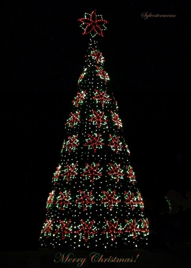 Poinsettia Christmas Tree photo by Sylvestermouse