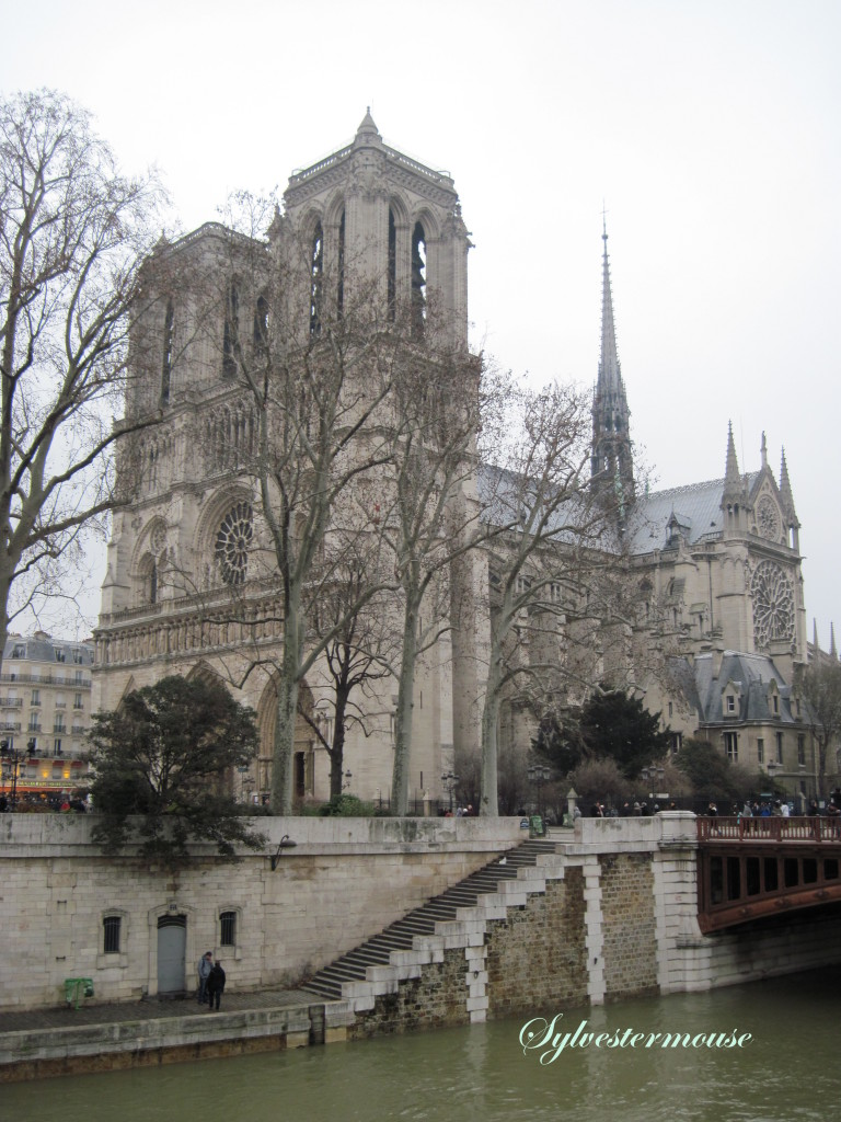 Notre Dame on New Years Day